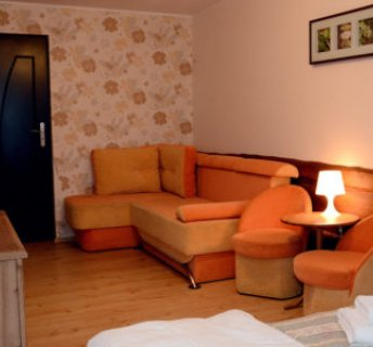 Standard Room 2 persons with the possibility of an extra bed