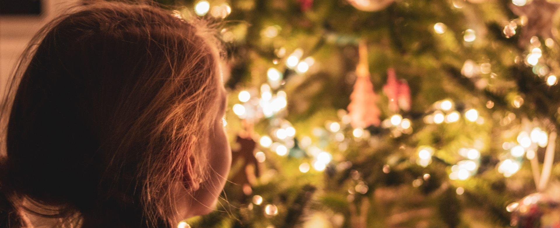 Ferie Świąteczne na Kaszubach 2021