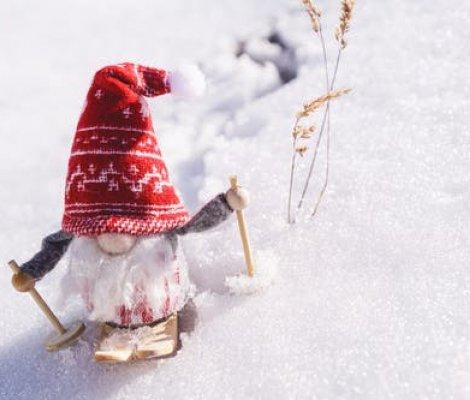 Wakacje Zimowe !!!