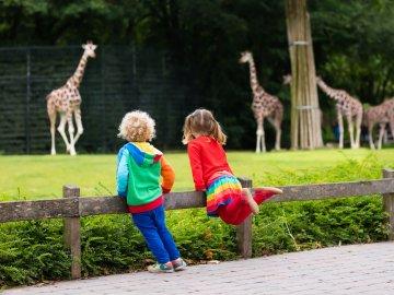 Weekend w Hotelu Focus Katowice Chorzów *** z wizytą w Śląskim Ogrodzie Zoologicznym