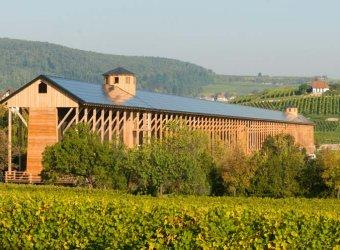 Übernachtung mit Halbpension - Leben wie Gott in der Pfalz