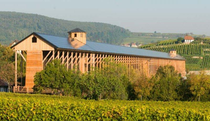 Leben wie Gott in der Pfalz