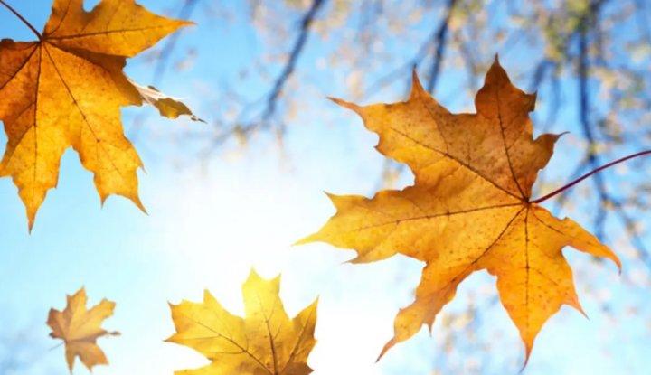 Entspannen Sie sich im Herbst - 5 Nächte