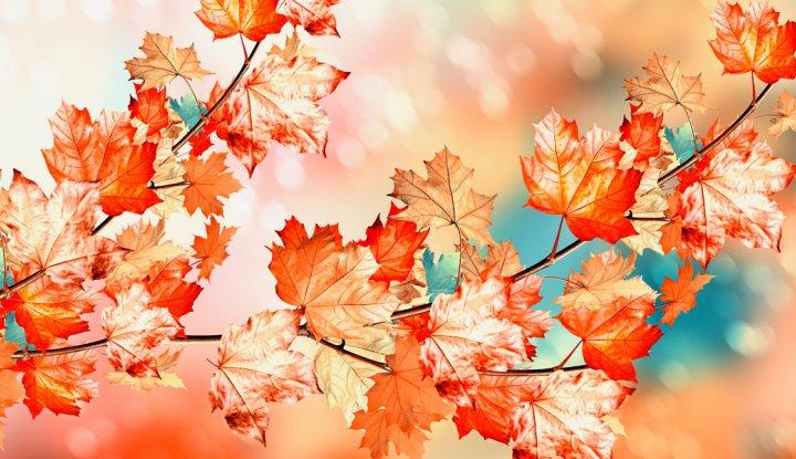 Relax na jesień - 7 nocy