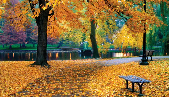 Zdrowie na jesień - 5 nocy