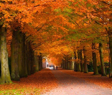 Autumn at the seaside
