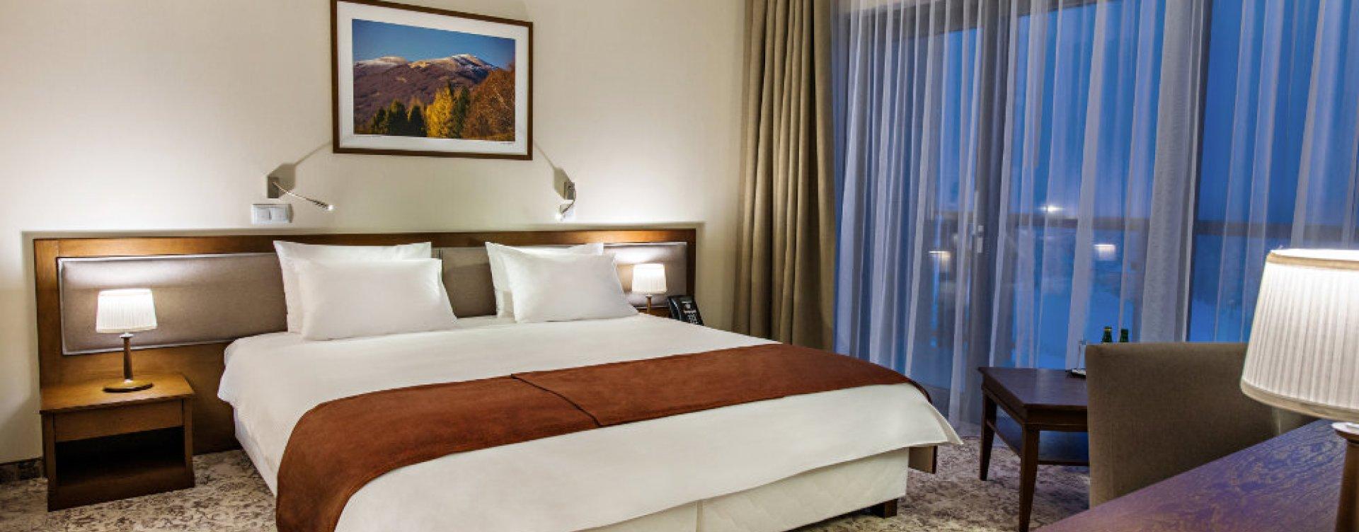 Pokój 1-osobowy w Hotelu