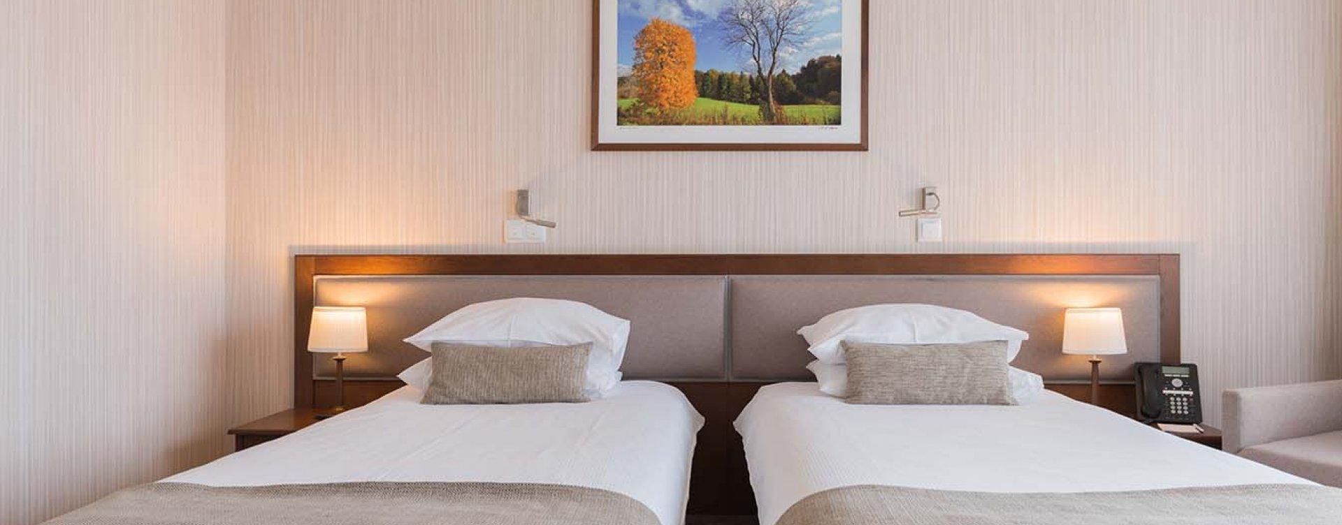 Pokój Standard w Hotelu