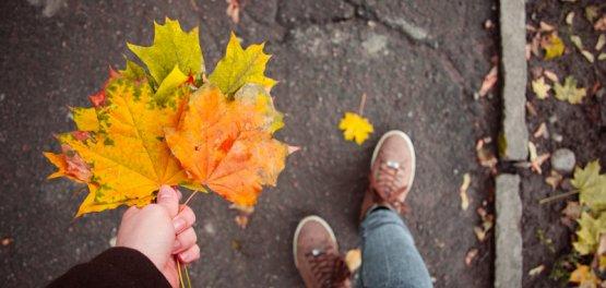 Radom: Jesienny Weekend Świąteczny