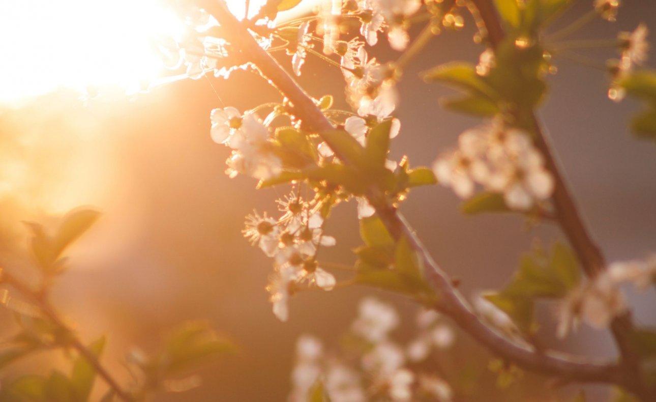 Łomża: Wiosenny odpoczynek