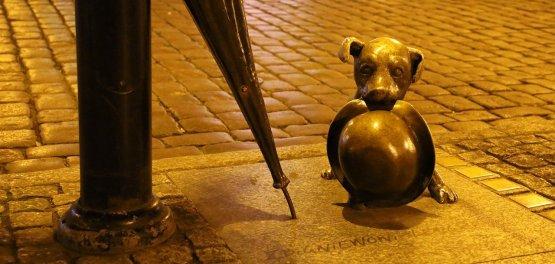 Toruń: Jesień w grodzie Kopernika 2020