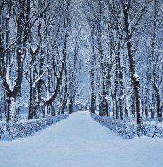 Zakochaj się w Warszawie zimą i otrzymaj dodatkowo 10% rabatu
