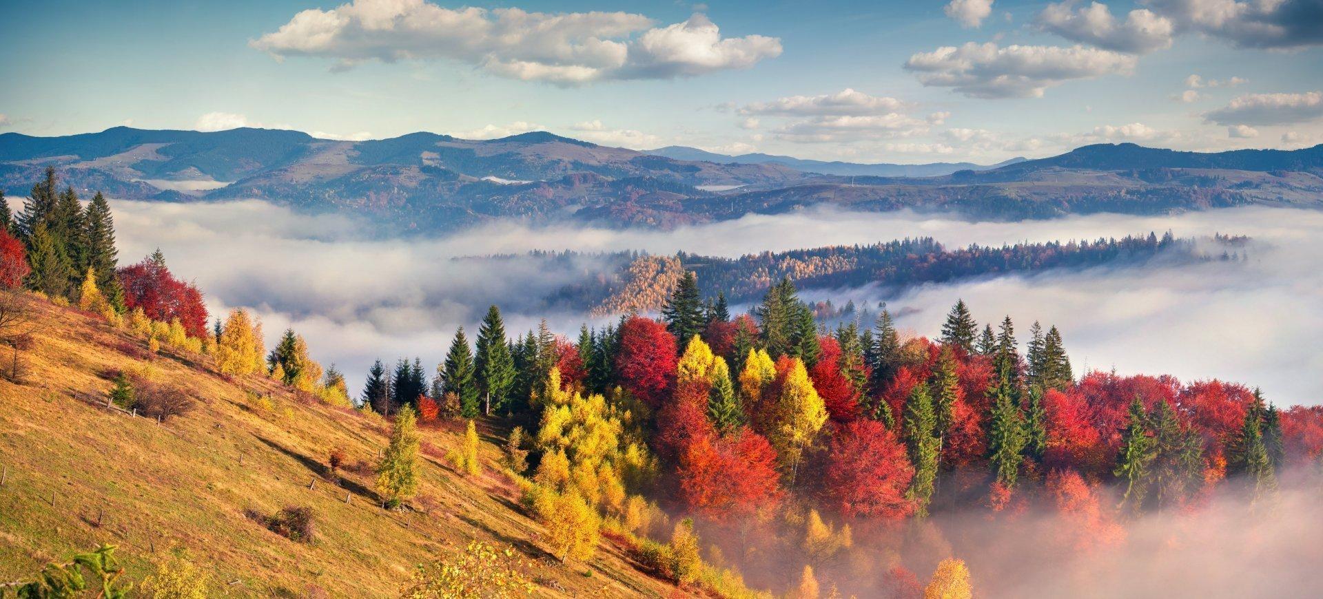 Jesień Oferta dłużej czyli taniej [do -35% ze śniadaniem]