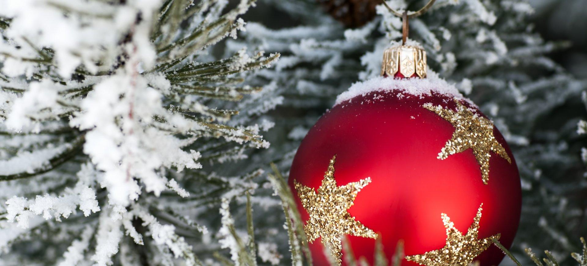 Pakiet Boże Narodzenie - Oferta Promocyjna
