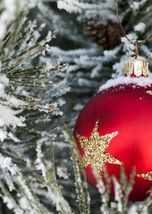 Boże Narodzenie - Przedsprzedaż!!!!