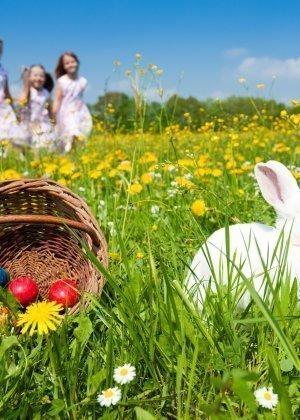 Rodzinna Wielkanoc w górach - min. 2 noce