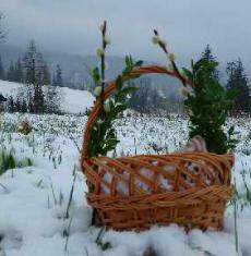 Święta Wielkanocne w  Dafne Zakopane
