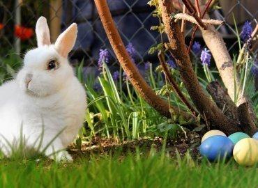 Święta Wielkanocne w Szklarskiej Porębie