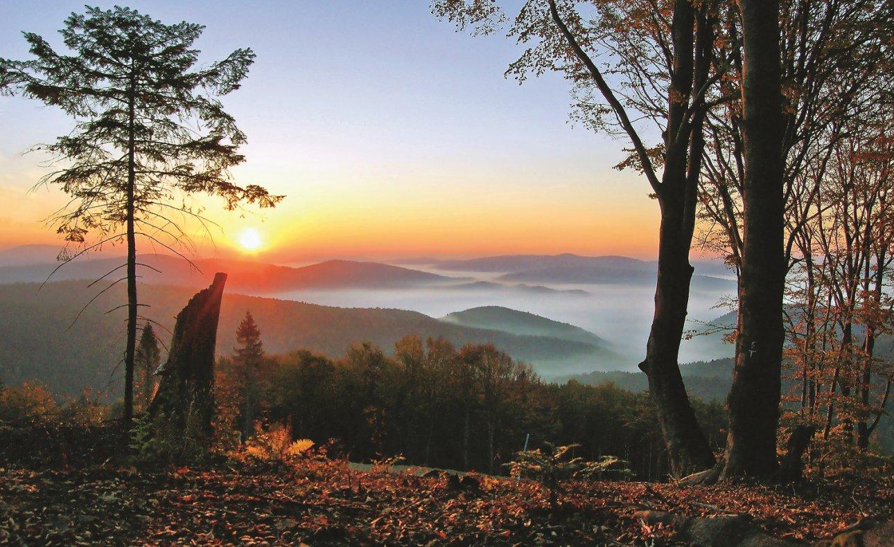 Krynica-Zdrój: Jesienne weekendy