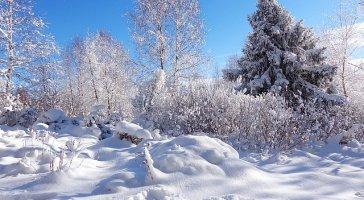 Zimowa wyprzedaż