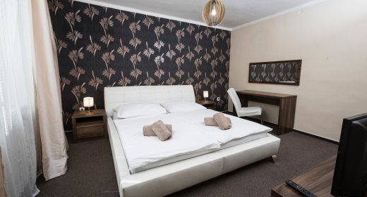 Suite double with king size bed (12)