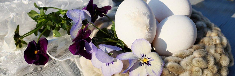 Święta Wielkanocne w Willi Retro w Szklarskiej Porębie