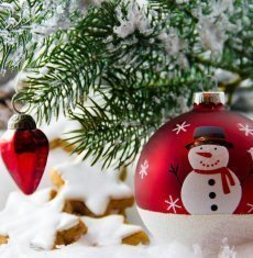 Magiczne Boże Narodzenie w Willi Olimp Retro